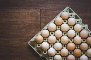 gallinas ponedoras, ponedoras, reproductores, aves de corral, pollos de engorde, pollitos, pollo, zinc, agua salina, cloruro de sodio,