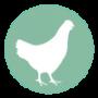 普维动物保健品有限公司, 动物饲料添加剂, 植物提取物, 植物生物素, 精油, PFA, 植物性饲料添加剂, 植物学, 植物性饲料添加剂, 新型促生长剂, 植物素, 替代抗生素促生长剂, 天然产品, 肠道健康, PlusVet Animal Health,